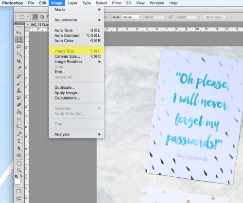 honeyandgazelle-tutorial-photoshopbasics-resizingimage-3